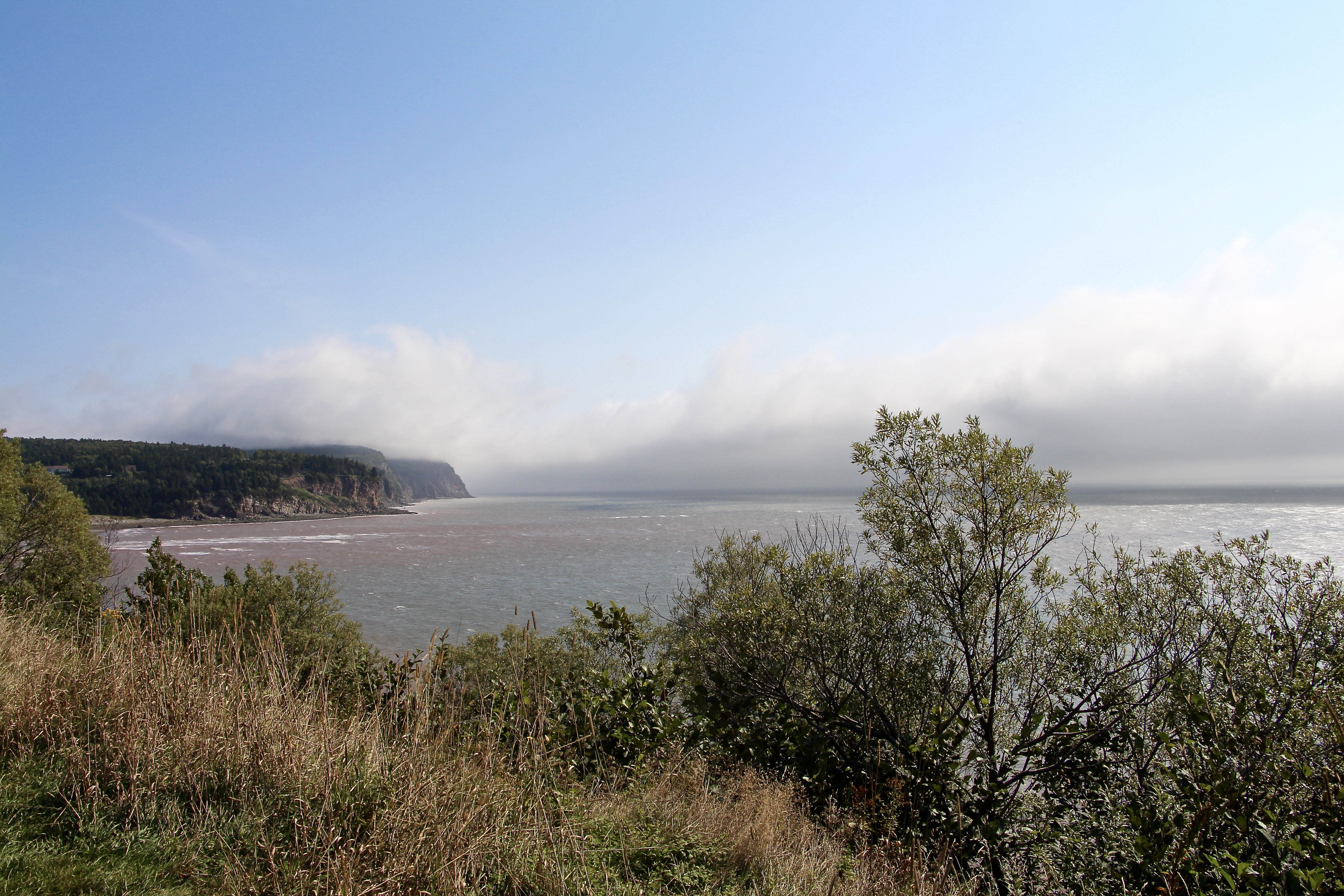 Bay Of Fundy Camping >> Camping In Fundy National Park New Brunswick Lifeheartslove